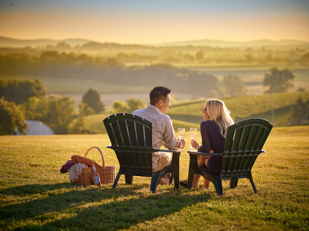 Enjoy a picnic with our wine on the lawn at our vineyard location